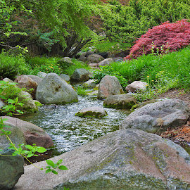 Whispering Ripples by Kathy Woods Booth - City,  Street & Park  City Parks ( brook, ripples, rocks, stream, serene, sparkling )
