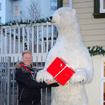 getting a gift from Mr. Polarbear in Reykjavik, Hofuoborgarsvaeoi, Iceland