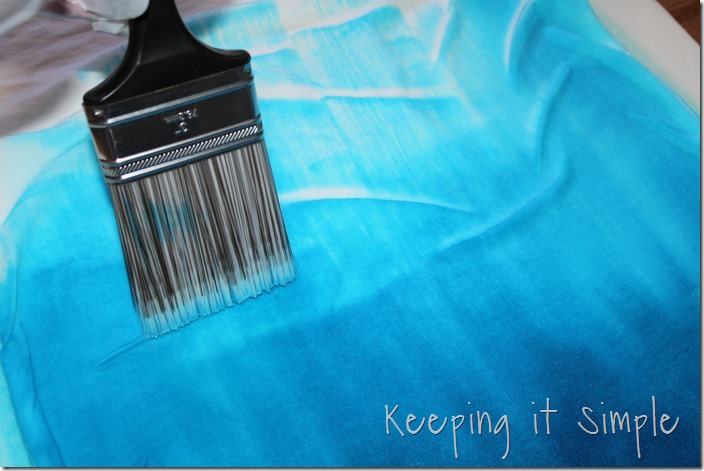 #ad DIY-Ombre-Tie-Dye-Shirt-Refashion (17)