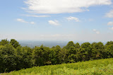 Shenandoah - July 2014 - 49