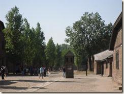 Auschwitz  Bilder des Horrors 012