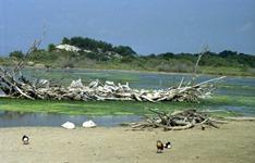 1991.08.24-098.22 le lac