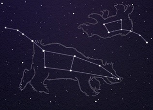 Ursa Major and Ursa Minor_0