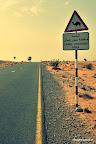 Kierunek - Dubaj
