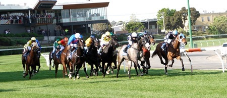 race 8_cox plate _straight 1