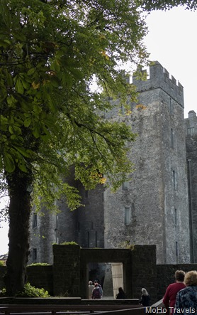 01 Killarney to Bunratty (1 of 1)-45