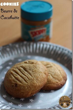 Cookies Beurre de Cacahuète 2 logo