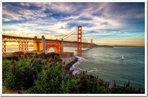 puente-golden-gate-flowers-mar-wallpapers_41074_2560x1600