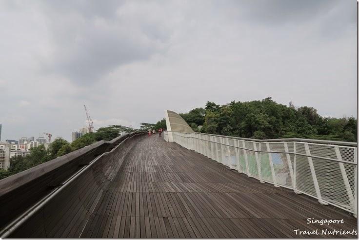 新加坡花柏山 (43)