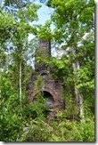 Chimney in the trees 2