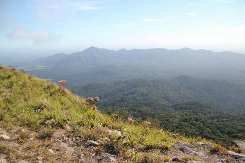 Serra do Tepequém - Amajari, Roraima, foto: Tripadvisor