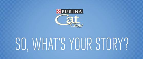How To Get a Free Cab Ride in NYC | Purina Cat Chow — Cat Cab