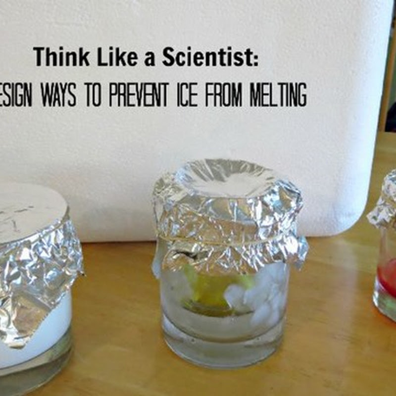 Think Like a Scientist: Prevent Ice From Melting