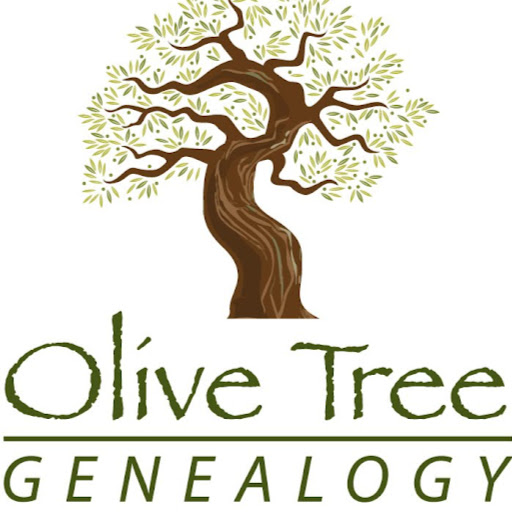 Ask Olive Tree Genealogy a Question: Give All Information When Writing a Query