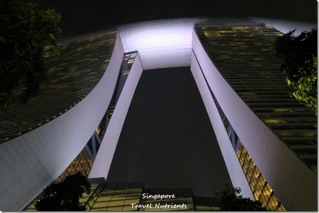 新加坡超級樹燈光秀 (42)