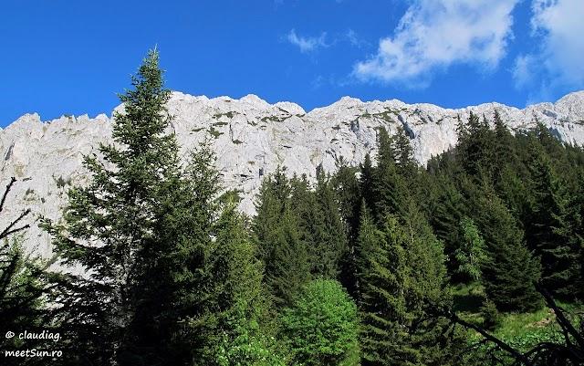 Piatra-Craiului-Sudica-5295-rw.jpg