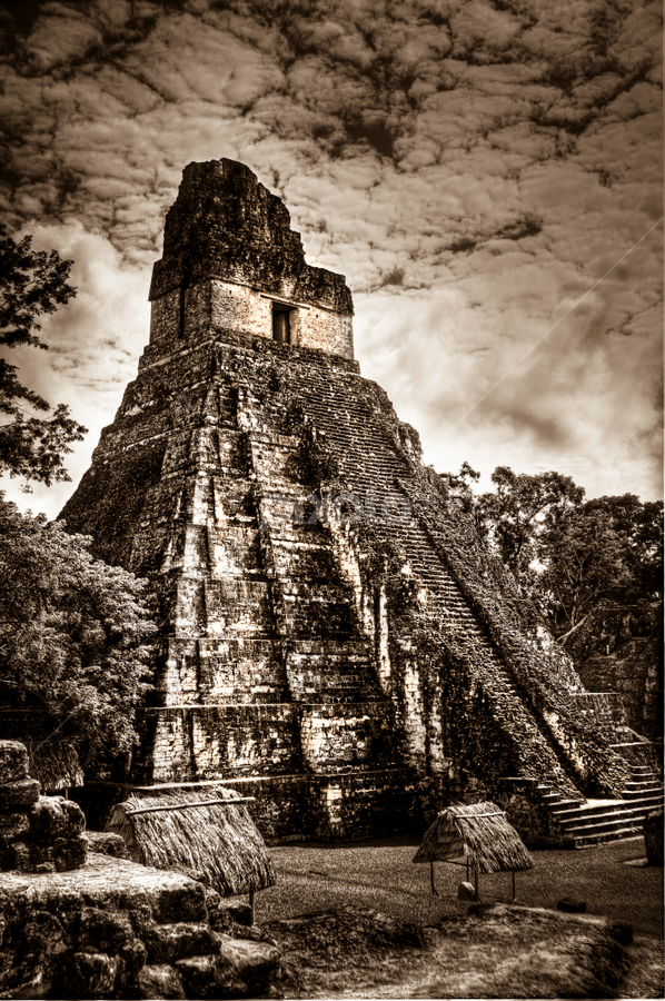 Mayan Marvel by Vicki Overman - Buildings & Architecture Public & Historical ( guatemala, temple 1, ruins, tikal, mayan )