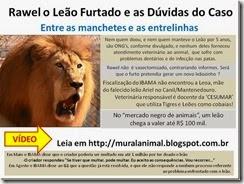 rawell_leao_furtado_thumb[1]