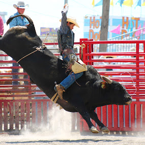 Think Straight Ride For Eight by Brian  Shoemaker  - Sports & Fitness Rodeo/Bull Riding ( bull rider, winning, rank, cowboy, rodeo )