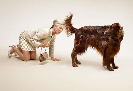 date-a-dog-ads