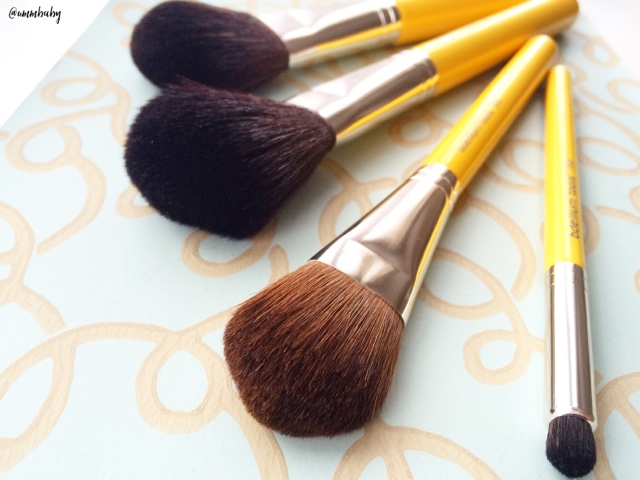 affordable professional blusher and powder makeup brushes