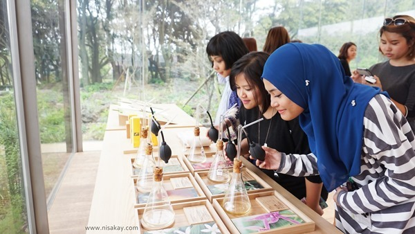 Blog Nisa Kay - Innisfree Green Tour 2015 (14)