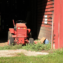 Old Red by Kym George - Novices Only Objects & Still Life ( farm, red, lawn mower, barn, tractor )