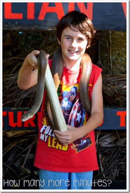 Australian Venom Zoon in Kuranda | How Many More Minutes?