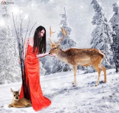 Snow-Princess-Deer-Whisper.jpg