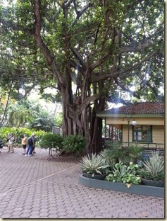 20150503_ cartagena vis ctr 1 (Small)