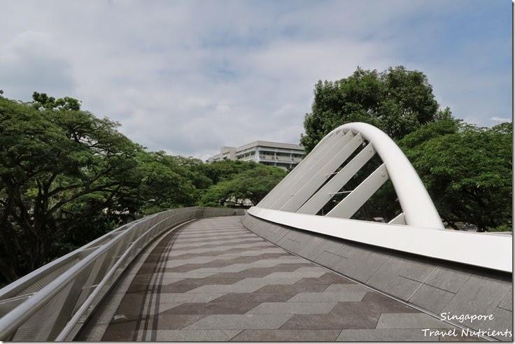 新加坡花柏山 (85)