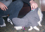 Delilah gets lost a lot in her new hoodie