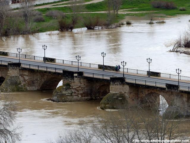 puente-ebro-tudela.JPG