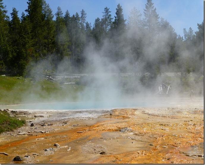 Yellowstone 059 (640x480)