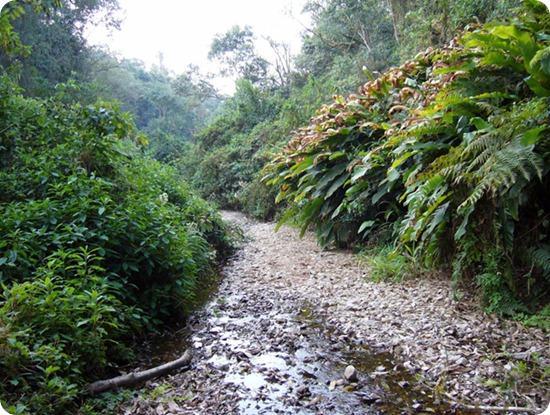baritu-biodiversità