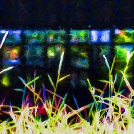 Grass Panes by Allen Crenshaw - Digital Art Abstract ( abstract, digital art, photography )
