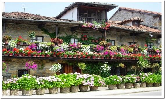 Balcones y ventanas, flores (12)