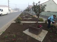 Înfrumusețarea Comunei Șiria - octombrie 2015