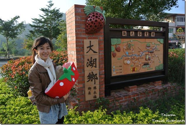 大湖草莓 (14)
