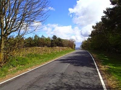 Larid Road
