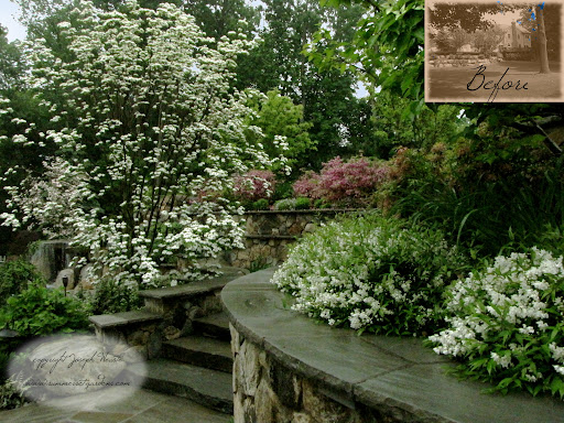 http://www.summersetgardens.com <br />A May view- the Dogwood and Dwarf Deutzia are in full bloom. The plantings are beginning to soften all of the masonry work that I designed and installed two years prior to this photo. This masonry and landscape project is located in Franklin Lakes, New Jersey.<br />Serving NY and NJ 845-987-1270 http://www.youtube.com/user/summersetgardends