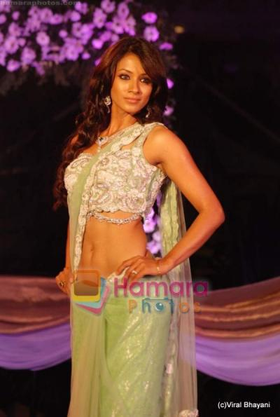 Barkha Bisht sexy saree