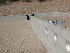 Wall tacks along ctyd 11/14