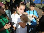 Los Lobatos con los animales del Campamento