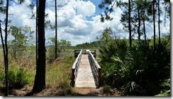 Bonnet Pond Overlook