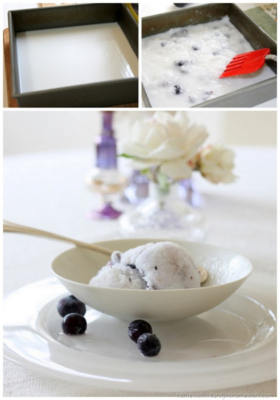 Coconut Blueberry Granita (homework - carolynshomework (15)