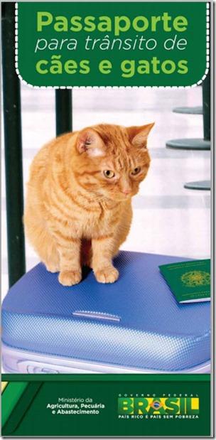 passaporte-cao-e-gato-1
