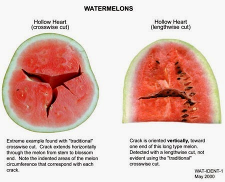 hollow-heart-watermelon-7