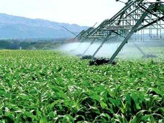 La sécheresse suscite des inquiétudes pour l'agriculture, pas pour l'eau potable