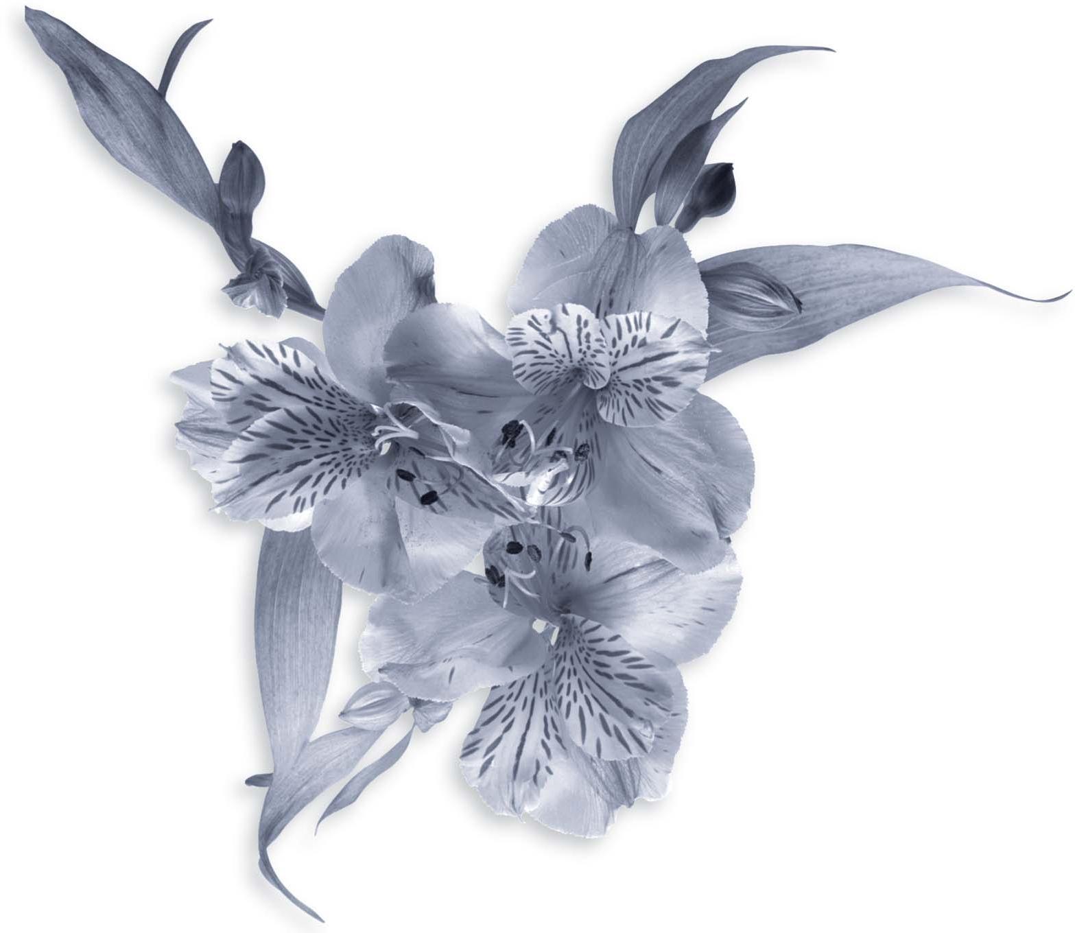 Floral Garland - Wedding